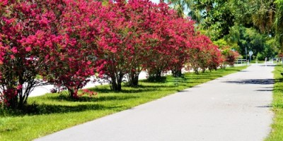 Pinellas Trail | Largo | Things to Do
