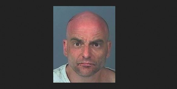 Randy Ross   Hernando Sheriff   Arrests