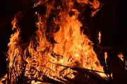 Pinellas Park Man Dies After House Fire