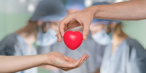 Organ Donation | Health | Medicine