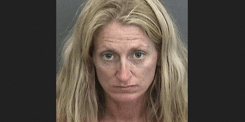 Sabrina Hendley | Hillsborough Sheriff | Arrests