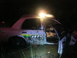Deer | Hernando Sheriff | Deputy Crashes