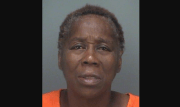 St. Petersburg Woman Accused of Hitting Police Officer