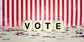 Vote   Elections   Politics