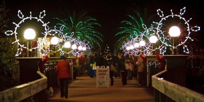Holiday Lights | Florida Botanical Gardens | Events