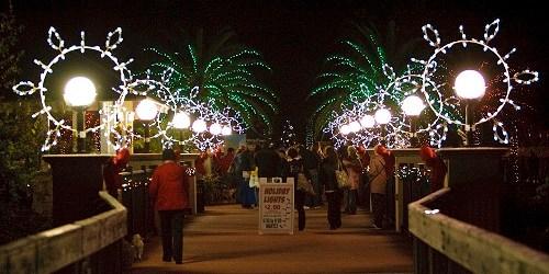 Holiday Lights | Florida Botanical Gardens | Events