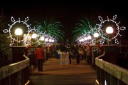Pinellas Lights Up Gardens for the Holidays