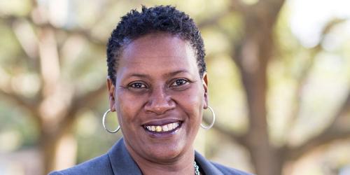 Lisa Wheeler Bowman | Politics | Elections