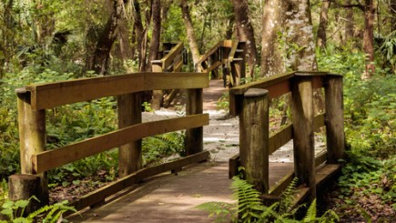 Moccasin Lake Park | CLearwater | Parks Recreation