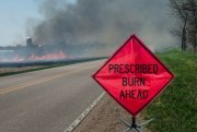 Fire Scheduled Today for Withlacoochee Forest