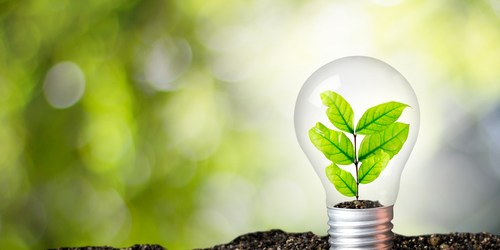 Environment | Pollution | Green New Deal