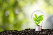 Thought Leaders Talk About Environmental Challenges