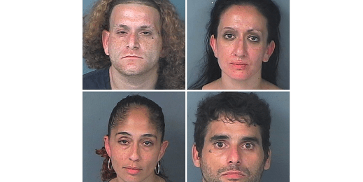 Spring Hill Drug Bust Nets Four | Tampa Bay Reporter