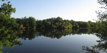 Lealman's Eden | Ray Neri Park | TB Reporter