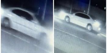 Hit and Run | Hillsborough Sheriff | Rogers Road Crash
