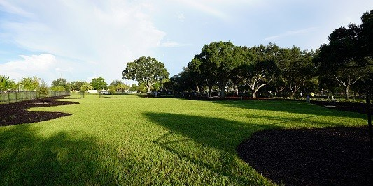 Crest Lake Park | Dog Park | CLearwater