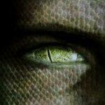 reptilian_alien_eye-165x210