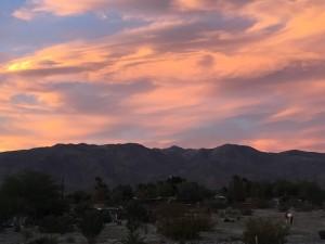 Sunset with Pony