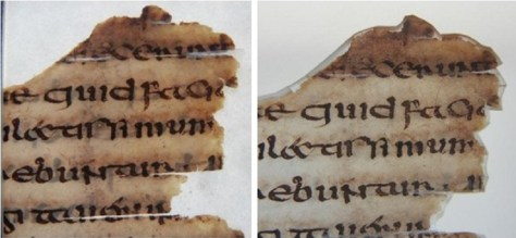 Figures 12a and 12b Codex Usserianus Primus, TCD MS 55, f. 135v, top right corner, showing several splits on the parchment due to the heavy ruling on a very thin skin. On the left is a detail during conservation with the caecum applied but still with the tissue facing on it; on the right the same area after conservation with the caecum holding the splits and the fragment inserted in its conservation mount © The Board of Trinity College Dublin, the University of Dublin. 2015.