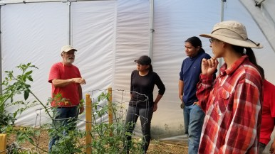 Growing Opportunities Farm Visit