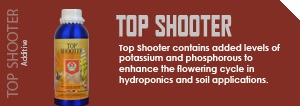 top_shooter