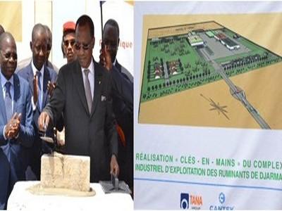 Tchad : 7 milliards de la BDEAC pour le complexe industriel de Djermaya