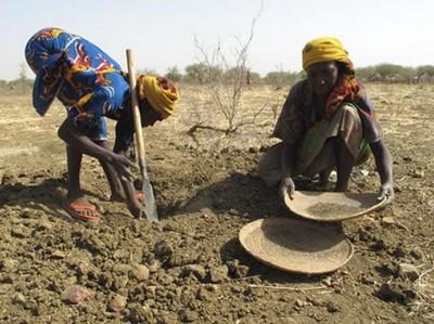 Tchad: adhésion à la mutuelle panafricaine contre la sécheresse
