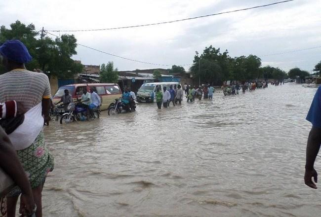 Tchad: après les deux premières pluies de l'année, la vitrine de l'Afrique «biga Bouta»