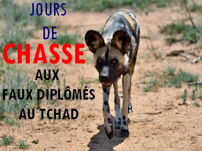 Audit des diplômes au Tchad: de la poudre aux yeux en faisant semblant de lutter contre une fraude massive et miroiter une bonne gouvernance fantôme