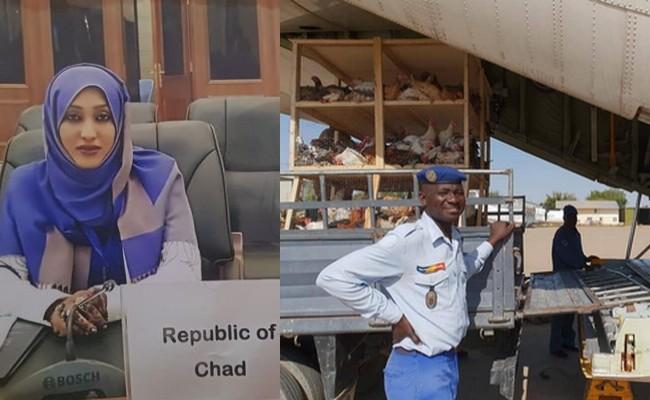 Tchad: quand 3 000 poules débarquées d'un avion à Faya-Largeau font le buzz sur les réseaux sociaux