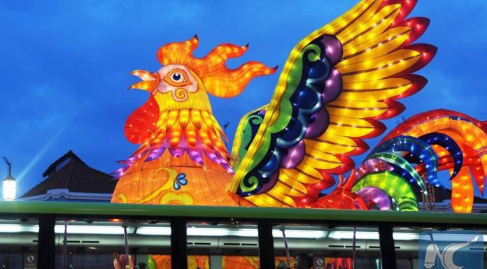 โคมไฟไก่ยักษ์ ผุดรับปีไก่ในสิงคโปร์