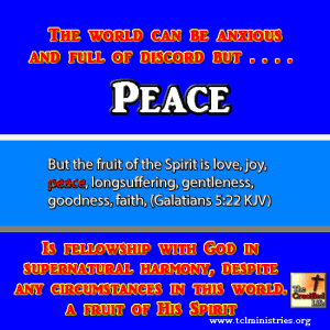 LOVE fruit of the spirit gal 5 1  222.fw