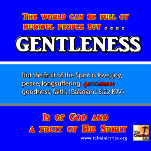 GENTLENESS fruit of the spirit gal 5 1.fw
