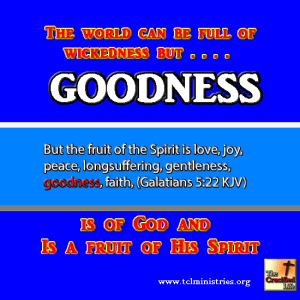 GOODNESS fruit of the spirit gal 5 1.fw