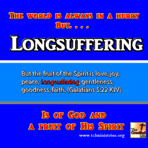 LONGSUFFERUNGfruit of the spirit gal 5 1.fw