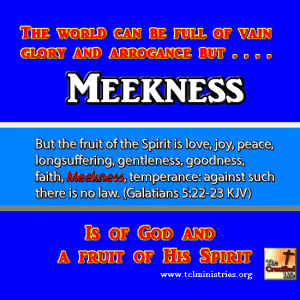 meekness fruit of the spirit gal 5 1.fw