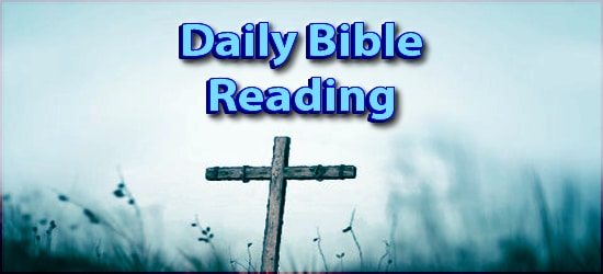 Daily Bible Reading February