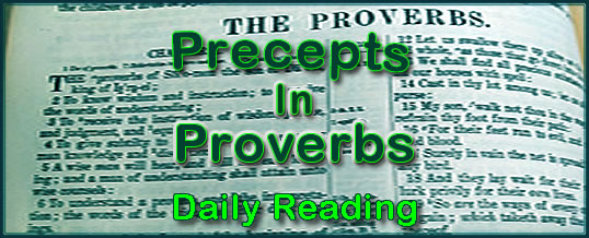 Proverbs Daily Reading Day 13