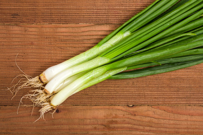 scallion herb