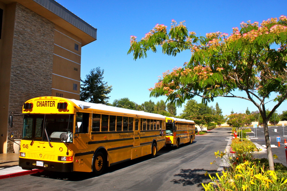 Los Angeles County School Buses