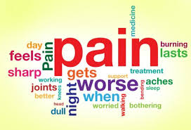 pain circuit
