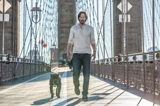 John Wick şi noul său companion canin