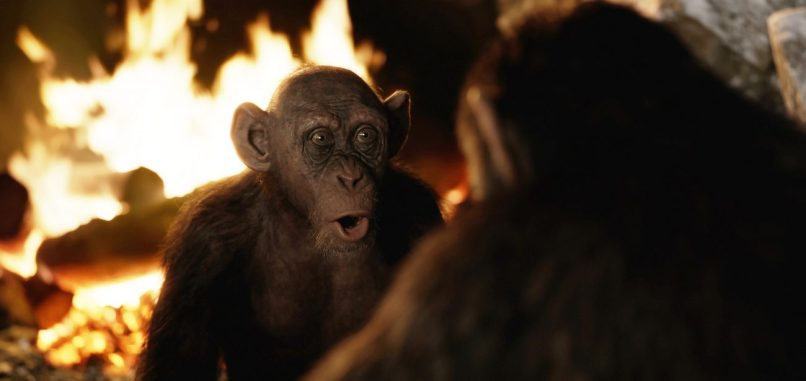 WAR FOR THE PLANET OF THE APES: Steve Zahn (Bad Ape)