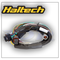 Elite 1000 Basic universal wire in harness