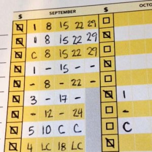lesson attendance sheet payment tracker