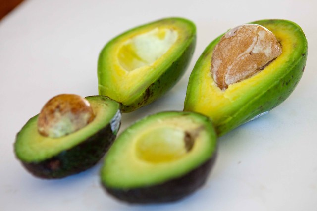 Cut florida and hass avocado