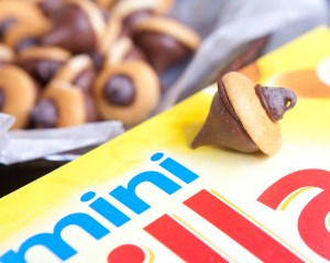 nilla & chocolate acorns