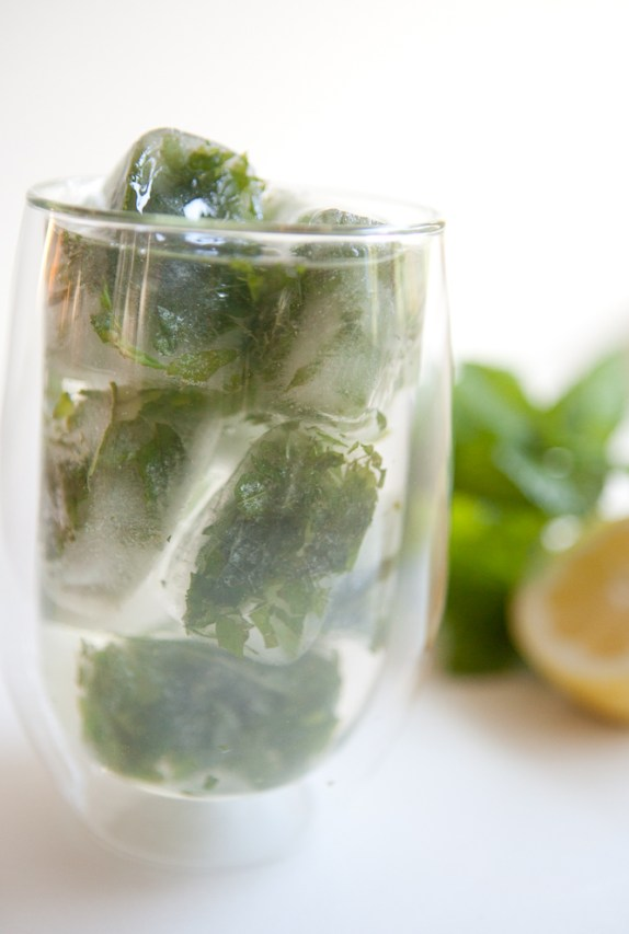 Lemon Mint Ice Cubes |via teacher-chef 5279