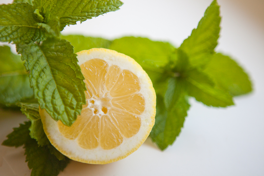 Image result for lemon and mint