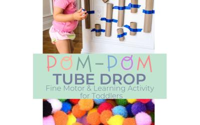 Pom Pom Tube Drop: Toddler Developmental Activity